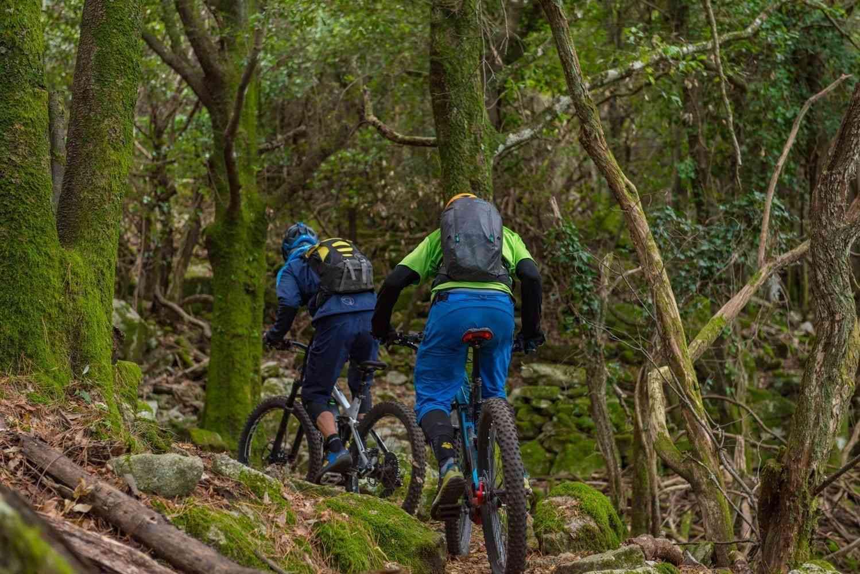 Dschungel Trail auf Elba