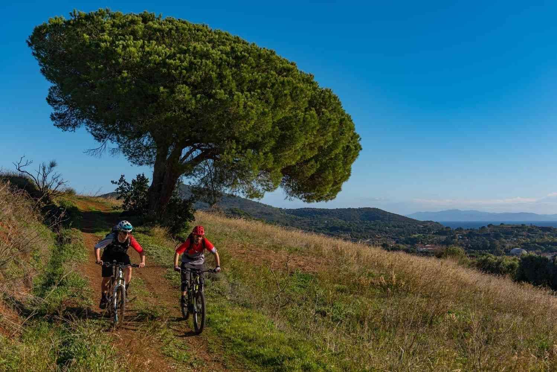 Gemütliche Auffahrt auf Elba