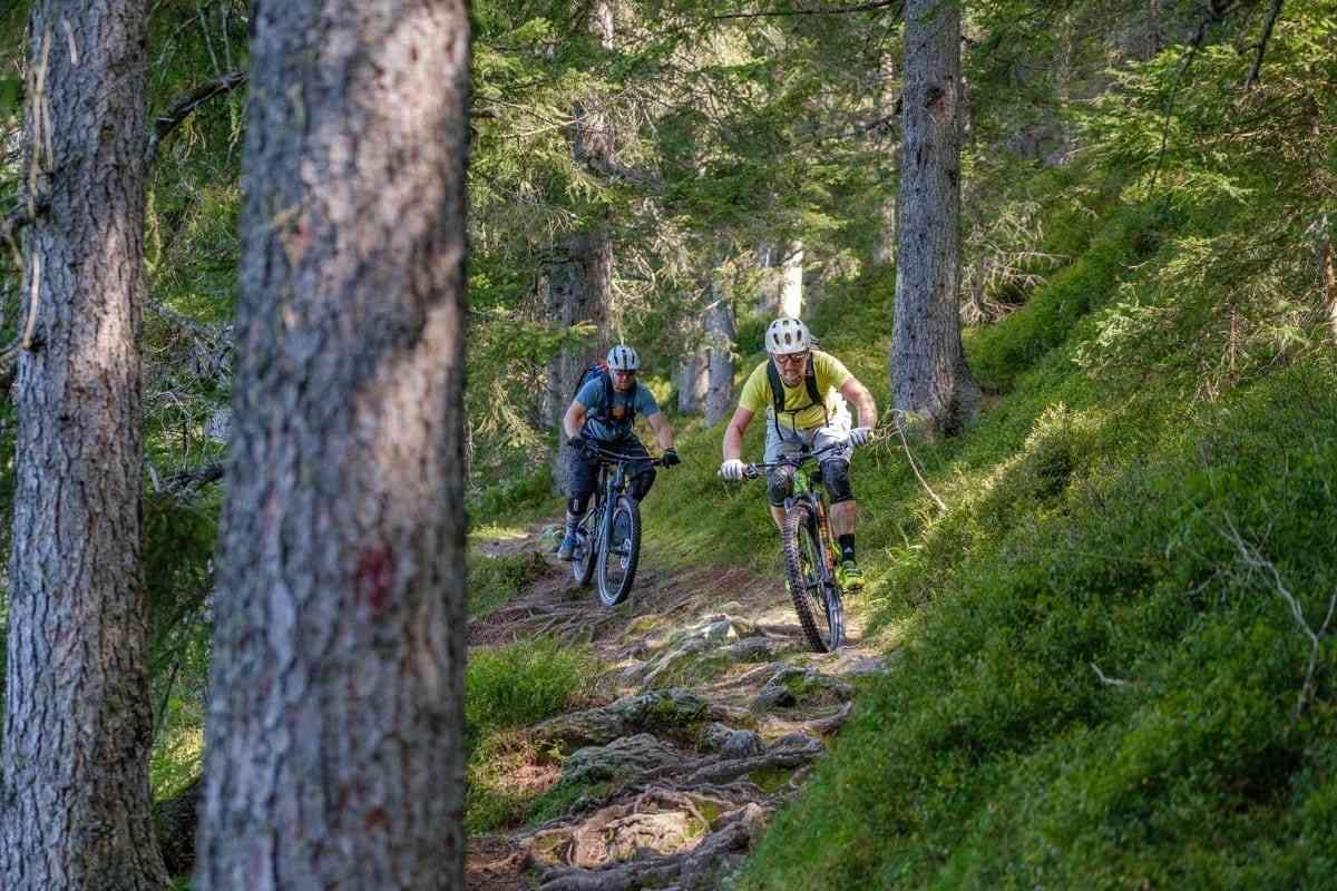 Super Waldtrail im Zillertal
