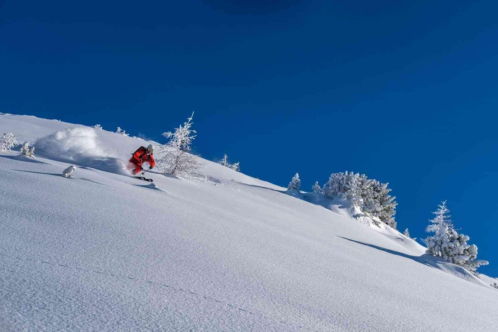 Freeride Dolomiti